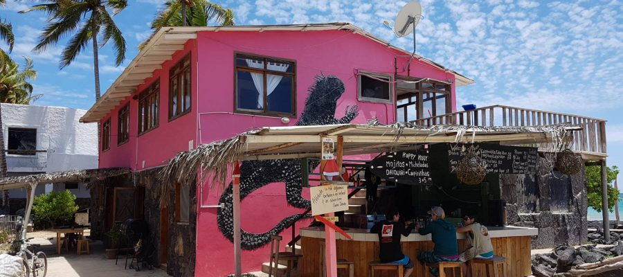 Unwind with a happy hour beer or cocktail at Casa Rosada on Isabela Island