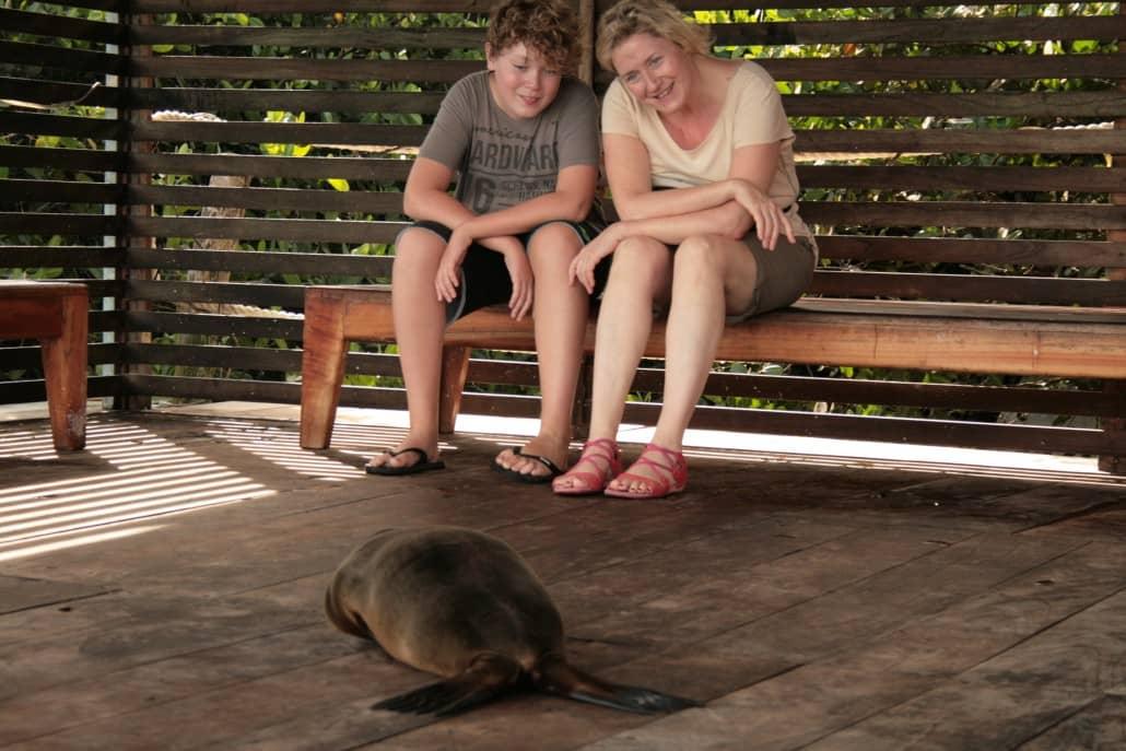 Im Kiez der Tiere - Wunderbare Begenungen während einer Galapagos-Reise erlebenIm Kiez der Tiere - Wunderbare Begenungen während einer Galapagos-Reise erleben