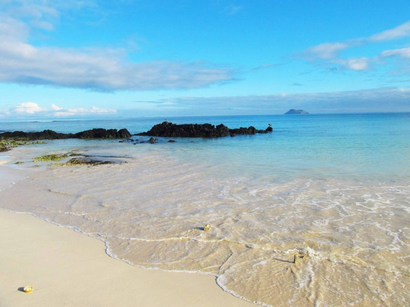 The gorgeous white sand beach, turquoise water and volcanic stone of Las Bachas Beach