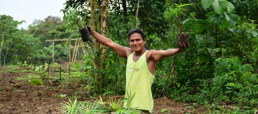 Galapagos PRO - Besuchen Sie während Ihrer Ecuador Reise das Aufforstungsprogramm der Shuar-Indianer