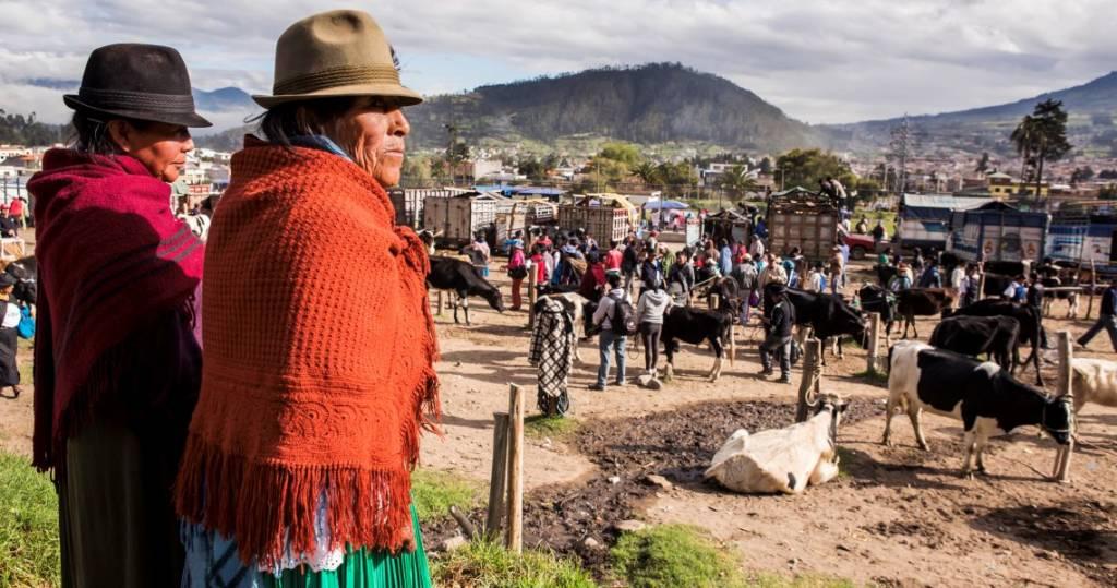 Traditioneller Viehmarkt im Hochland von Ecuador