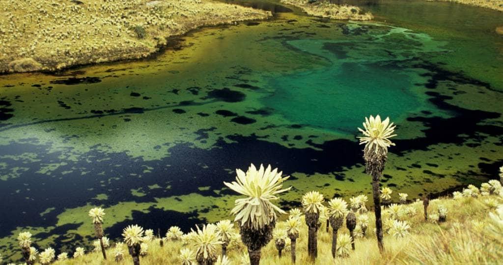 Galapagos PRO - Ecuador und seine wunderbaren Landschaften