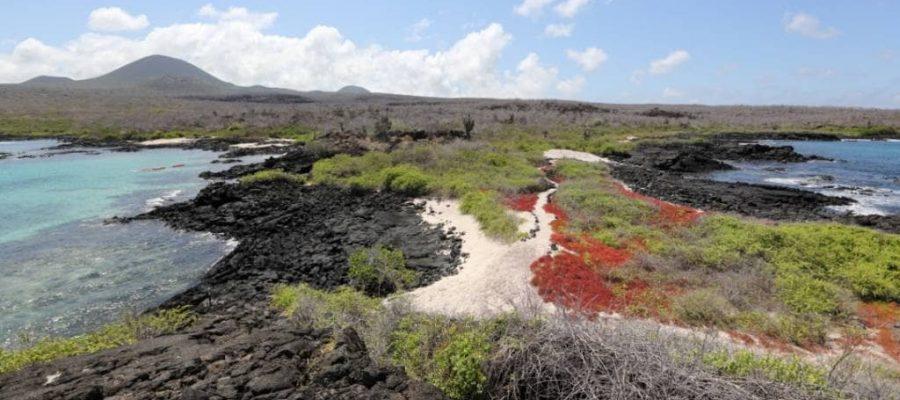 Die bunte Landschaft auf Galapagos-Insel Floreana