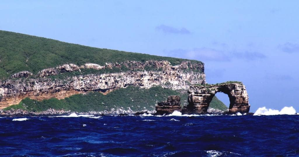 Galapagos PRO - Tauchen in Galapagos bei den Inseln Darwin und Wolf