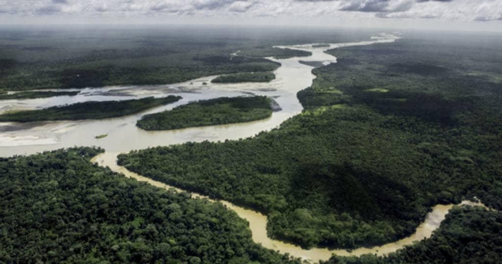 Galapagos PRO - Der Yasuní Nationalpark im Amazonasgebiet in Ecuador