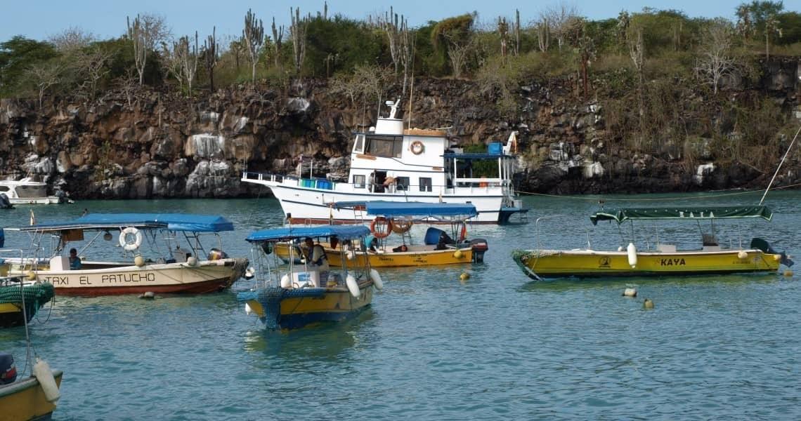 Der Hafen in Puerto Ayora mit Wassertaxis