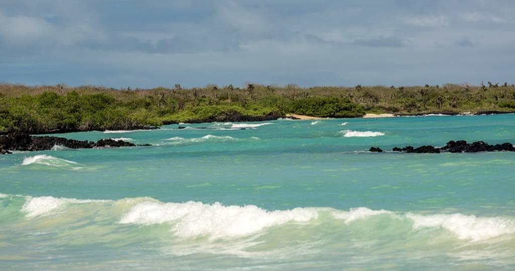 Wanderung zum Garrapatero Strand auf Galapagos-Insel Santa Cruz