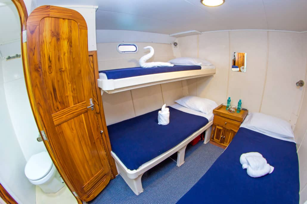Galapagos cruise nortada galapagos pro takes you on the for First class cruise ship cabins