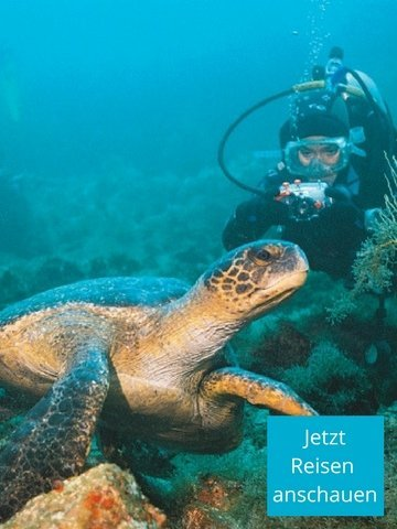 Galapagos-Inseln – Tauchen