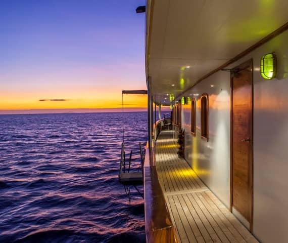 Galapagos Routen und Kreuzfahrten der Schiffe finden Sie hier.