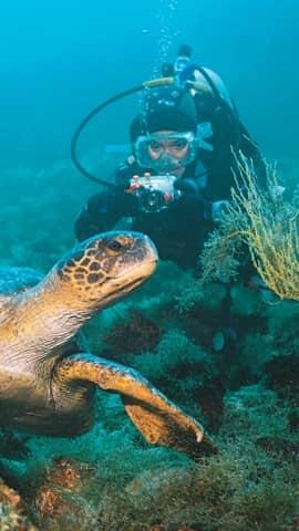 Tauchreisen mit Galapagos PRO
