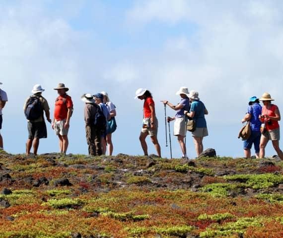 Bereisen Sie Galapagos in der Gruppe. Unsere begleiteten Galapagos PRO Gruppenreisen