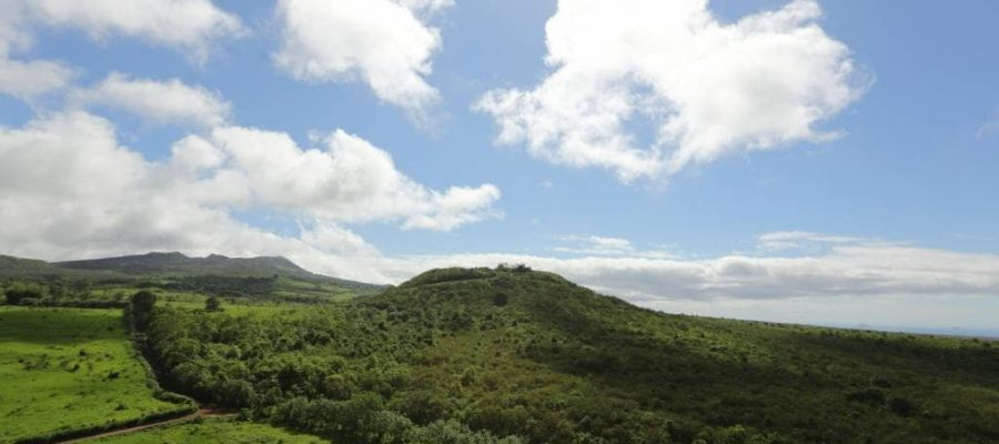 beautiful rolling green hills, coffee plantations and wild giant tortoises of the santa cruz highland
