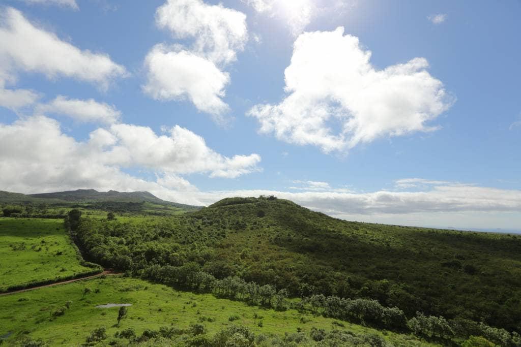 Das Hochland der Galapagos-Insel Santa Cruz - Heimat der Galapagos-Riesenschildkröten