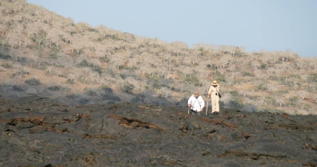 Faszinierende Wanderung auf den Lavafeldern der Galapagos-Insel Santiago