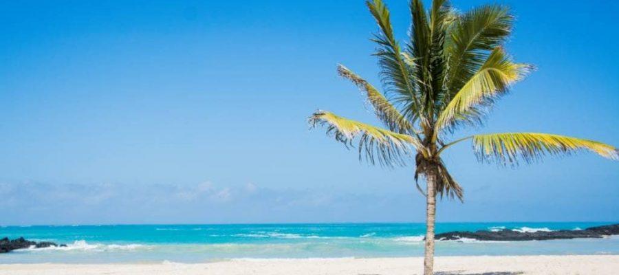 Erfahren Sie Ruhe und Entspannung auf der Galapagos-Insel Isabela