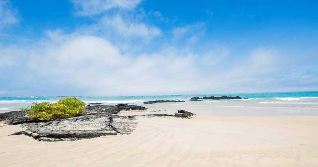 Der wunderschöne Traumstrand der Galapagos-Insel Isabela
