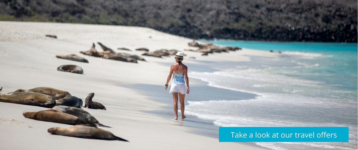 Our nicest Galapagos trips