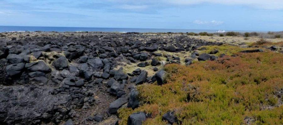 Galapagos - Von Vulkanen geprägte Landschaften