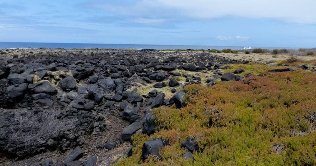 Galapagos PRO Landschaft auf Insel Espanola