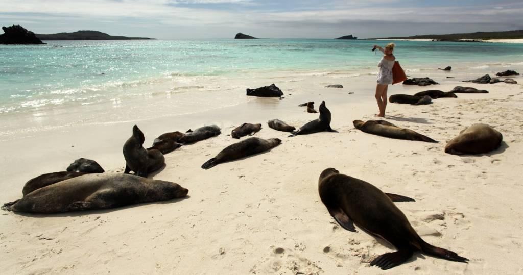 Galapagos PRO Vogelinsel Espanola Seelöwen am Strand mit Frau