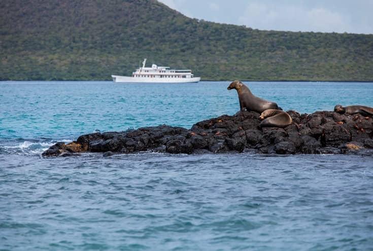 """Entdecken Sie die Schönheiten von Galapagos mit der """"Grace"""""""