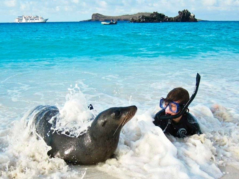 Galapagos-PRO-Isabela-II-Aktivität