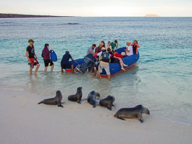 Galapagos-PRO-Ausflug-mit-Nasslandung