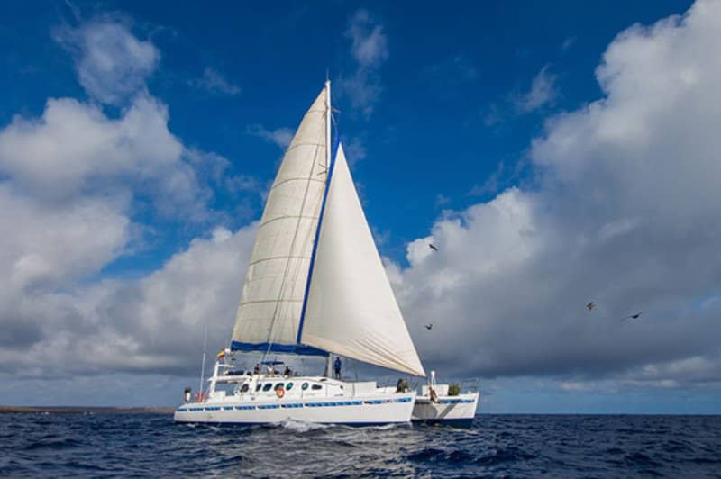 Galapagos-PRO-Nemo-III-Katamaran