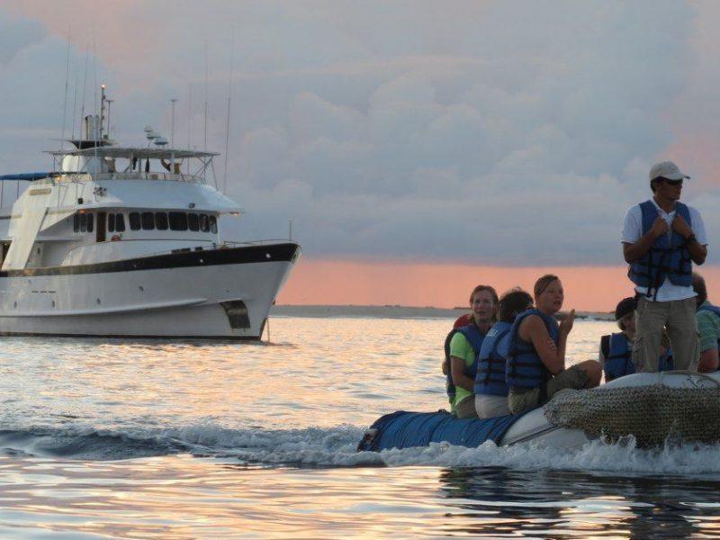 Galapagos-Kreuzfahrt - Ausflüge mit dem Schlauchboot vom Galapagos-Kreuzfahrtschiff Beluga aus
