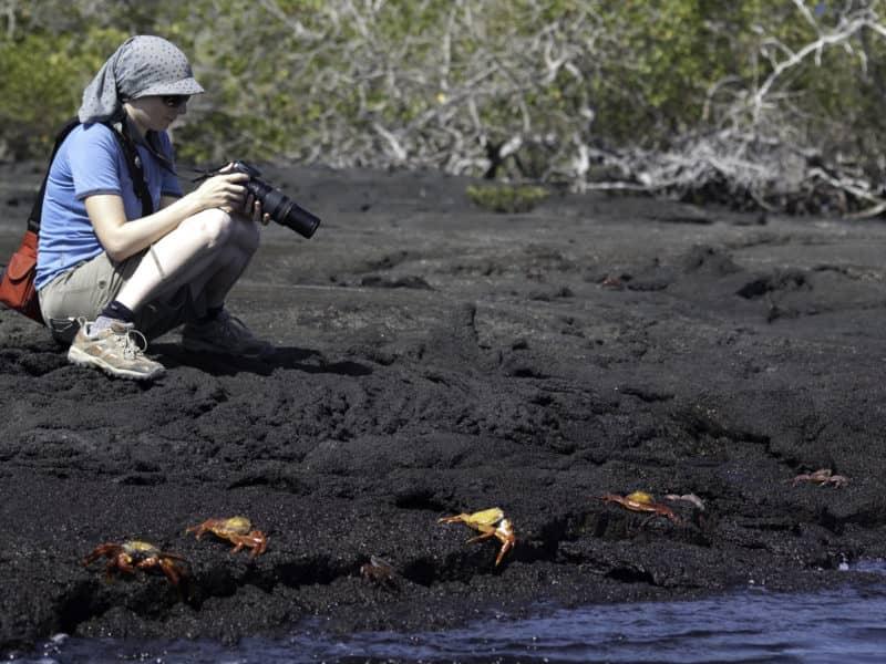"Das Naturparadies Galapagos mit der ""Galaven"" entdecken"