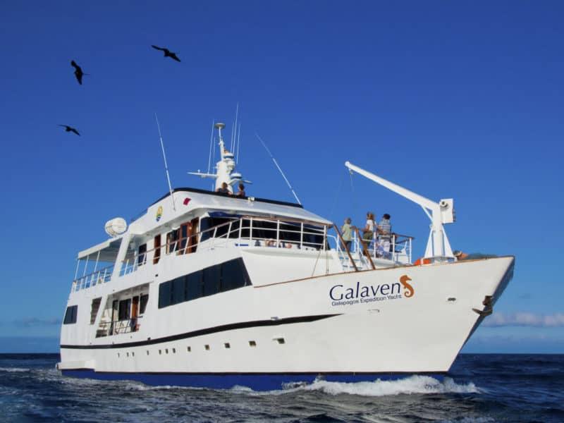 """Eine unvergessliche Galapagos Kreuzfahrt an Bord der """"Galaven"""" erleben"""
