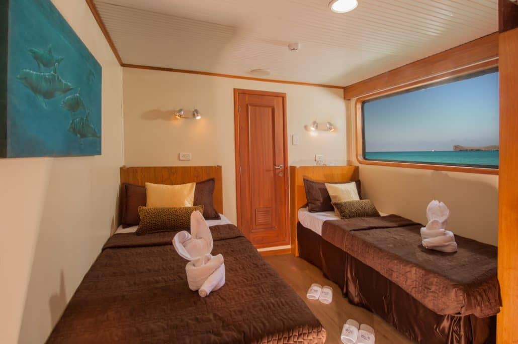 First class galapagos cruise galaxy galapagos pro takes for First class cruise ship cabins
