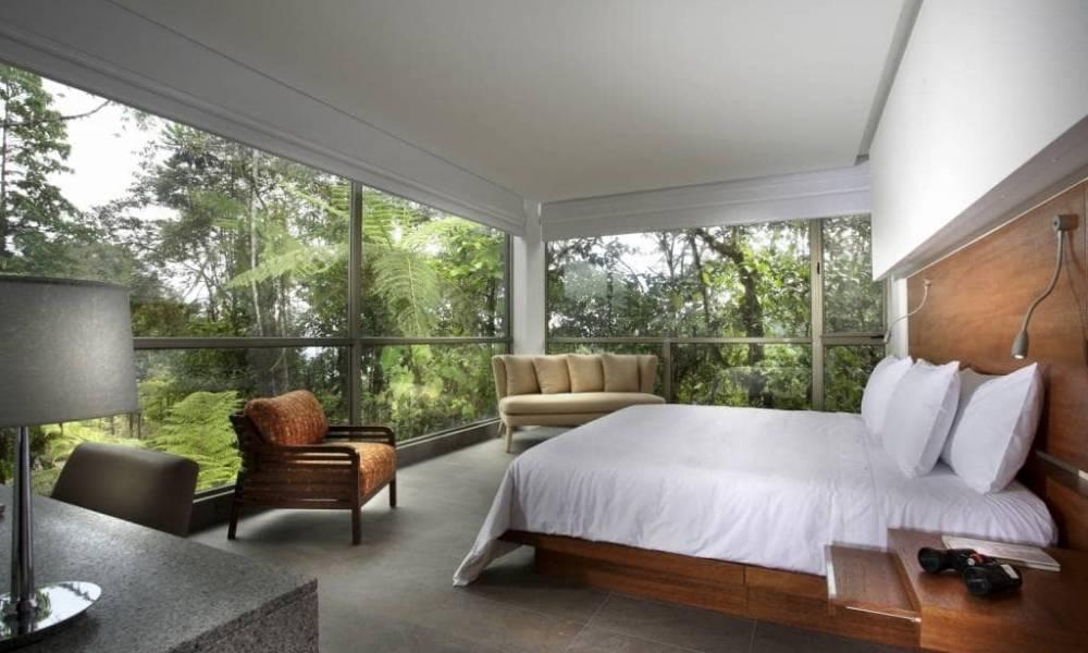 Mashpi Lodge Wayra-Zimmer - Ecuador & Galapagos Luxus-Reisen
