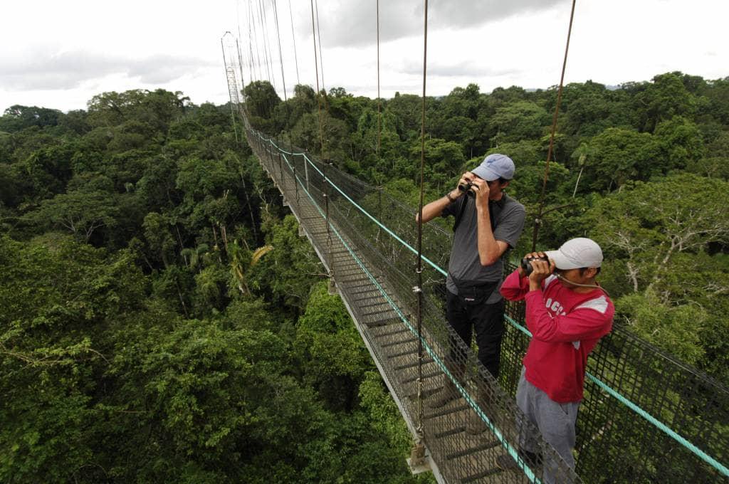 Aktivitäten rund um die Sacha Lodge - Ecuador & Galapagos Luxus-Reisen