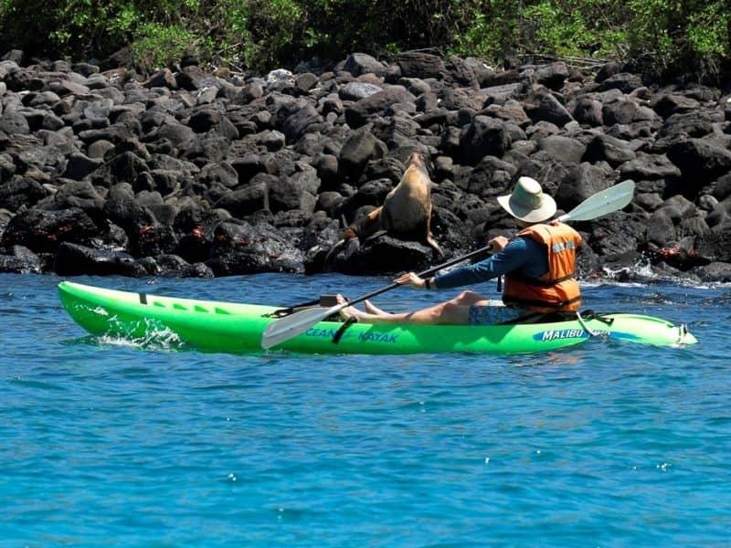 Galapagos PRO Tip Top IV activities
