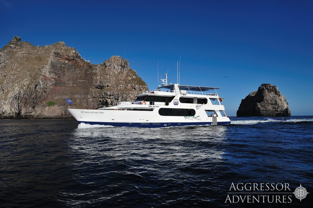 Galapagos-Kreuzfahrt Aggressor - Tauchsafari