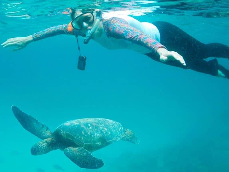 Die faszinierende Unterwasserwelt der Galapagos Inseln erleben