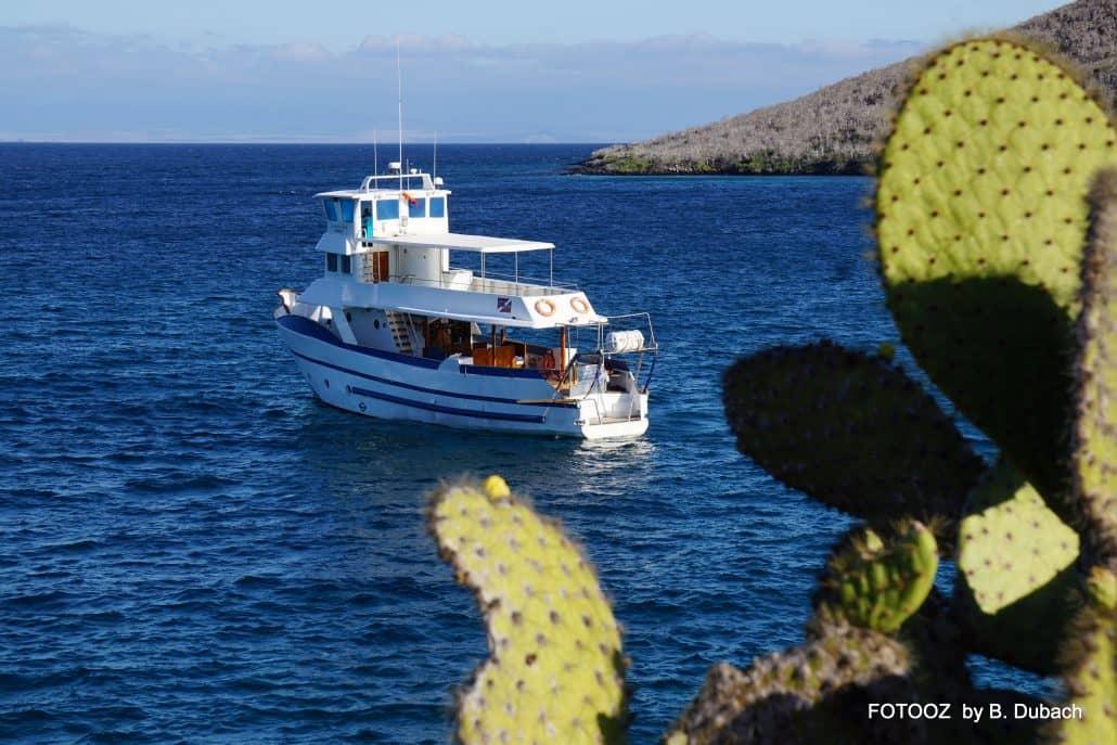 Tauch- oder Naturtouren, die Galapagos-Kreuzfahrt Danubio Azul ist für beides perfekt.