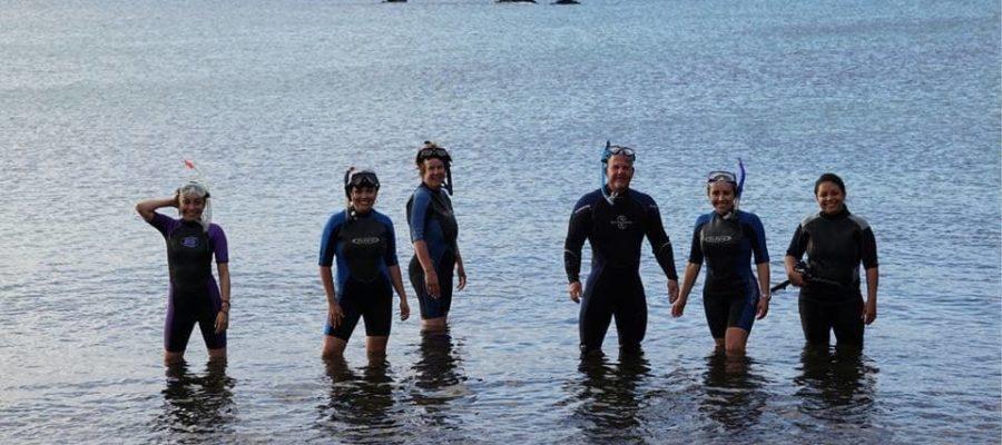 Tauchen und Schnorcheln in der Gruppe auf der Galapagos- Kreuzfahrt