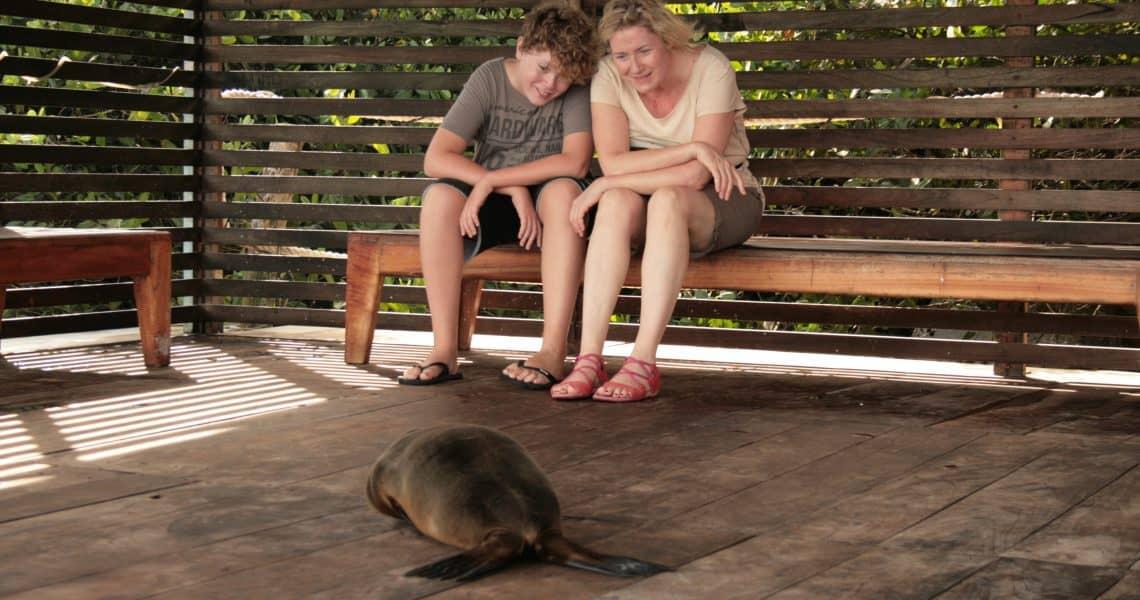 Tiere ganz nah beobachten - Ecuador und Galapagos-Inseln mit Kindern