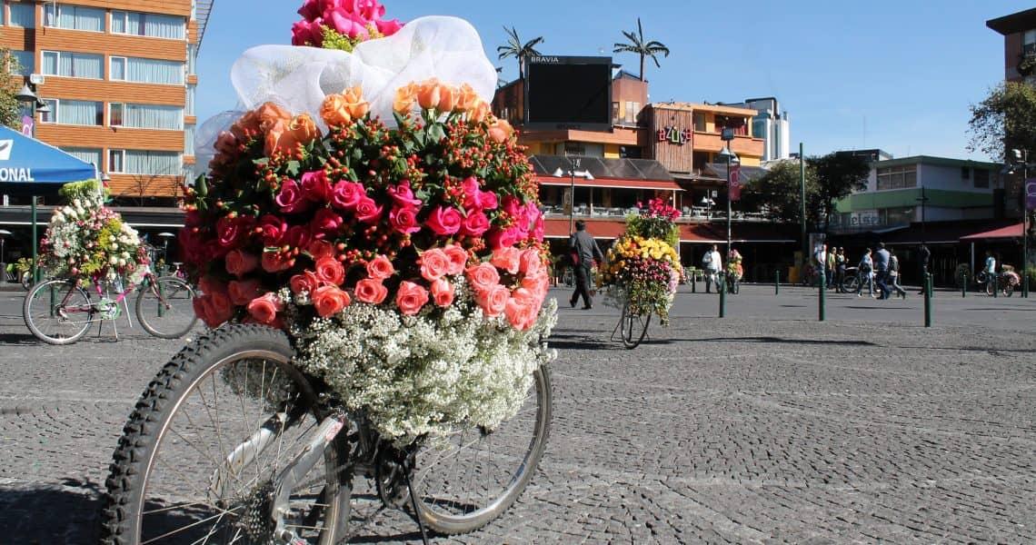 Ein Blumen geschmücktes Fahrrad im Stadtzentrum Quitos - Reisen in Ecuador und Galapagos-Inseln