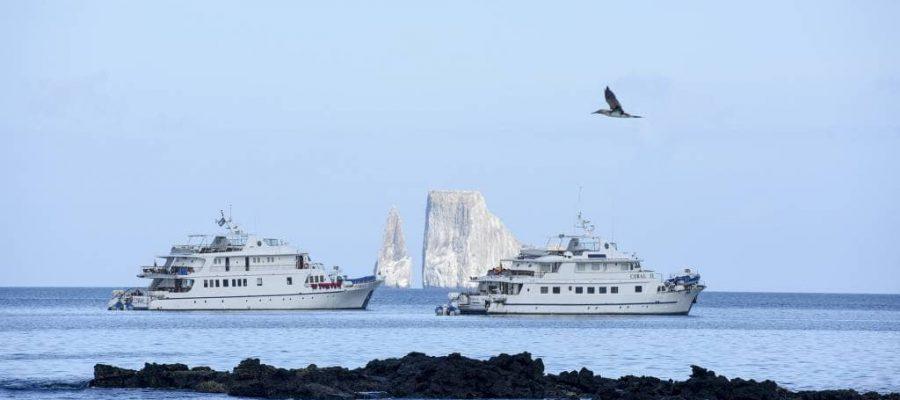 Auf komfortablen Schiffen die Schönheiten des Archipels entdecken -Kreuzfahrten Galapagos-Inseln