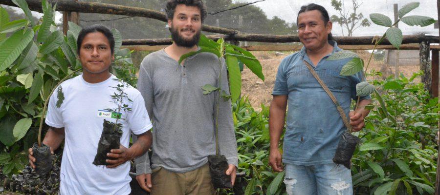 Regenwaldaufforstungsprojekt in der Gemeinde der Shuar
