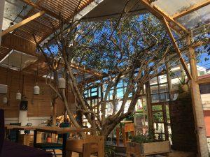 Ungewöhnliches Design mit viel Licht - Das Restaurant Casa Warmi in Quito