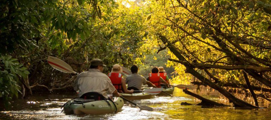 Kayak Tours through the Amazon Rainforest - Ecuador Adventures