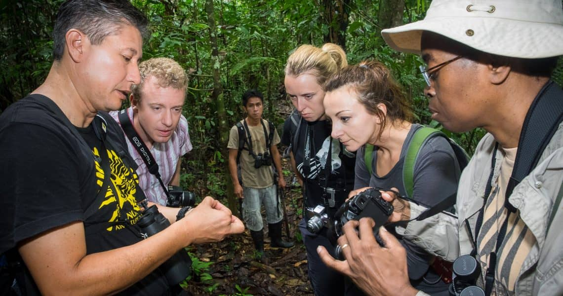 Geschulte Naturführer erklären die imposante Pflanzen- und Tierwelt - Top 10 Sehenswürdigkeiten im Amazonasgebiet