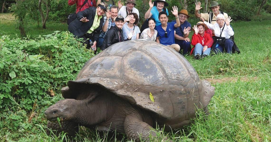 Die faszinierende Tierwelt hautnah entdecken - Ecuador-Galapagos-Gruppenreise