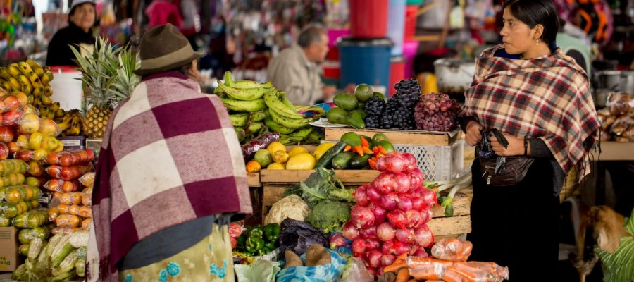 Agricultural produce is sold in the markets in regional Ecuador
