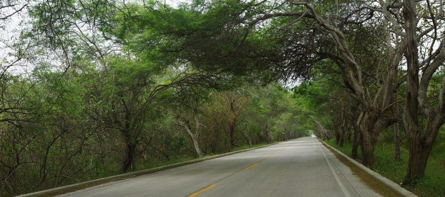 Sehr gut ausgebautes Straßennetz - Ecuador-Reisen mit dem Mietwagen